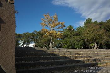 161129-01-park-nofilter.jpg